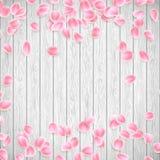 Realistische Sakura-bloemblaadjes op een witte houten achtergrond EPS 10 vector Royalty-vrije Stock Fotografie