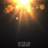 Realistische Sonne des Vektors auf transparentem Stockfoto