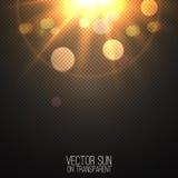 Realistische Sonne des Vektors auf transparentem Lizenzfreie Stockfotos