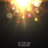 Realistische Sonne des Vektors auf transparentem Lizenzfreies Stockbild