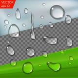 Realistische transparante waterdalingen voor plaatsing op om het even welke achtergrond, glas of een blad Vectorreeks geïsoleerde Royalty-vrije Stock Foto's