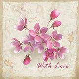Realistische vectorbloemen op schetsmatig bloemendocument Royalty-vrije Stock Foto's