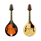 Realistische vectordieMandoline op witte het instrumenten mini-Gitaren van de mandolinevolksmuziek wordt geïsoleerd in vooraanzic Royalty-vrije Stock Foto
