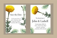 Realistische Vektorillustration der Ringelblumenblume auf Einladungskarte stockfotos