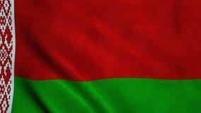 Realistische vlag ultra-HD van Belarussia die in de wind golven Naadloze lijn met hoogst gedetailleerde stoffentextuur stock videobeelden