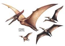 Realistische waterverfdinosaurus Royalty-vrije Stock Afbeelding