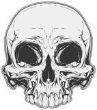 Realistische witte en grijze menselijke schedeltatoegering Royalty-vrije Stock Afbeelding