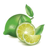 Realistische Zitrone lizenzfreies stockfoto