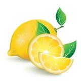 Realistische Zitrone mit Scheiben der Zitrone Stockfotos