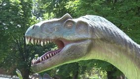 Realistischer Allosaurusdinosaurier in Park Kopf stock video footage