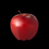 Realistischer Apfel des Vektors Stockfotos