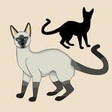 Realistischer schwarzer Schattenbildsatz der siamesischen Katze Lizenzfreies Stockbild