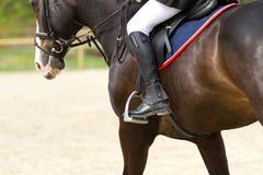 Realistisches Bild der Formalität kleidete Horsewoman auf einem Pferd Lizenzfreies Stockbild