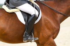 Realistisches Bild der Formalität kleidete Horsewoman auf einem Pferd Lizenzfreie Stockfotos
