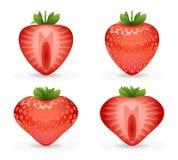 realistisches Designerdbeervektor illustraton der Frucht 3d stock abbildung