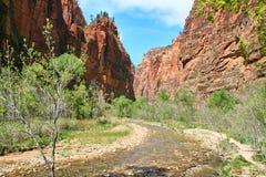 Realistisches Foto ohne Farbeffekte von einem Fluss in Zion National Park Lizenzfreie Stockfotos