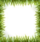 Realistisches grünes Gras wie der Rahmen lokalisiert auf Weiß Lizenzfreies Stockfoto