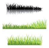 Realistisches Gras auf einem weißen Hintergrund Lizenzfreies Stockbild