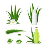 Realistisk detaljerad 3d aloe Vera Product Set vektor Royaltyfri Illustrationer