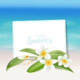 Realistisk havsbakgrund Tropisk blommastrandbakgrund Royaltyfria Bilder