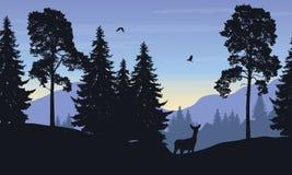 Realistisk illustration av berglandskapet med skogen, Royaltyfria Foton