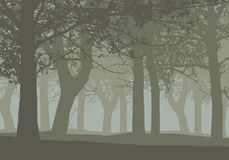Realistisk illustration av en lövfällande djup skog med träd och vektor illustrationer