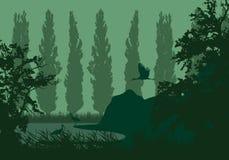Realistisk illustration av ett våtmarklandskap med en sjö eller en flod, vasser och popplar på kusten Tre storkar under en grön h royaltyfri illustrationer