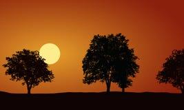 Realistisk illustration med konturer av lövfällande träd, risi stock illustrationer