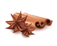 Realistisk isolerad fastställd symbol för vektor av den kanelbruna pinnen och stjärnan Anice på vit bakgrund Royaltyfria Foton
