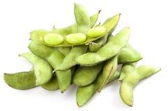 realistisk soy för bönaillustration Royaltyfri Bild