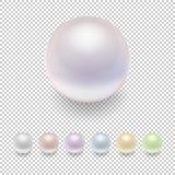 Realistisk uppsättning för vektorpärlasymbol, nyanserade färger Closeup som isoleras på genomskinlig bakgrund Designmall, modell Royaltyfri Fotografi