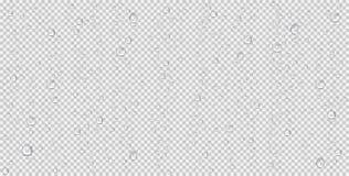 Realistisk vattendroppar, ångabubblor eller kondensation Regndroppar på genomskinlig bakgrund vektor illustrationer