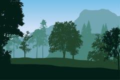 Realistisk vektorillustration av berglandskapet Arkivfoto