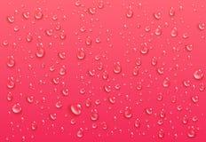 Realistiska genomskinliga vattendroppar Rena förtätade små droppar på ljus rosa bakgrund Blöta yttersida och klar flytande vektor illustrationer