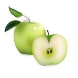 Realistiska gröna Apple och halva skivade Apple Vektorillustration som isoleras på den vita bakgrundssymbolen Royaltyfri Bild