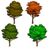 Realistiska skuggiga trädillustrationer för vektor i gräsplan- och apelsinfärger Arkivfoto
