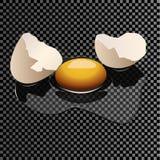 Realistiskt brutet ägg på en genomskinlig bakgrund Royaltyfria Foton