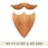 Realistiskt ljust rödbrun skägg med den lockiga mustaschen Royaltyfri Fotografi