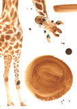 Realistyczna akwareli żyrafa Obrazy Royalty Free