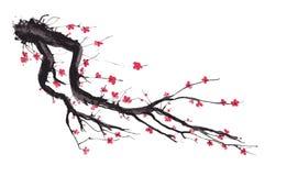 Realistyczna Sakura okwitnięcia akwarela odizolowywająca na białym tle royalty ilustracja