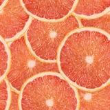 Realistyczna wektorowa ilustracja grapefruitowego plasterka bezszwowy wzór Obrazy Royalty Free
