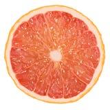 Realistyczna wektorowa ilustracja grapefruitowy plasterek Fotografia Royalty Free
