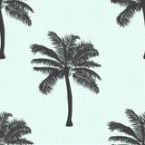 Realistycznego drzewka palmowego bezszwowy wzór Drzewko palmowe odizolowywający również zwrócić corel ilustracji wektora Zdjęcie Stock