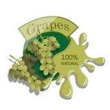 Realistyczni winogrona Obrazy Royalty Free