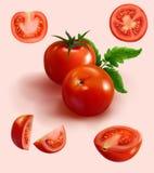 Realistyczny czerwony pomidor w różnorodnym cięciu Zdjęcie Royalty Free