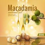 Realistyczny 3d macadamia dokrętki oleju skorupy reklamy kosmetyczny szablon Gałąź opuszcza nutshell Lekka złota pogodna piękno o Obraz Royalty Free