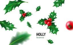 Realistyczny holly, ostrokrzew z jagodą i liście, jemioła set Boże Narodzenia, nowego roku świętowania wakacyjny symbol, dekoracj Obraz Royalty Free