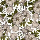 Realistyczny kwiatu wzór Rocznika baroku tło Różany dogrose, rosehip, brier wally Rysunkowy rytownictwo ilustracja wektor