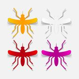 Realistyczny projekta element: komar Obrazy Royalty Free