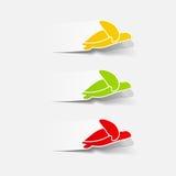 Realistyczny projekta element: morze? żółw Obrazy Stock